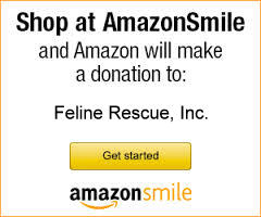 amazonSmile
